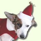 За повече настроение са шапките в тон с тоалета: Коледен модел